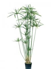 Un original arbol de cyperus alternifolius artificial en esa esquina que nunca crece nada, te dar� la vida que ...