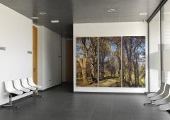 Fotografía impresa en lienzo gran formato para decoraciones