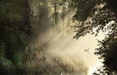 Fotograf�as con la luz como protagonista en el blog de verescreer.es