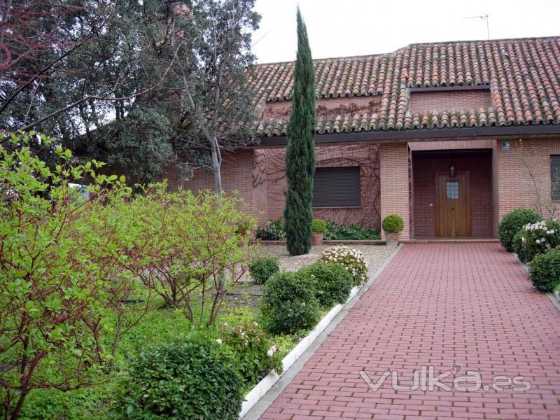 Foto jardin de entrada a vivienda con cipr s y viburnum for Jardin cipres