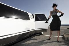 America limousine services s.l - foto 12