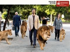 Foto 13 seguros en Asturias - Tu Seguro Decesos