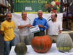 II Concurso Calabazas