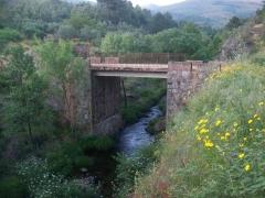 Puente de mariquita