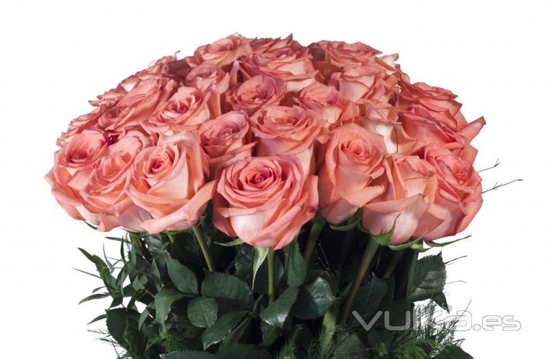 Envio De Flores A Domicilio En Argentina Home Flowers