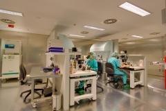 Ivida, banco de células madre de cordón umbilical