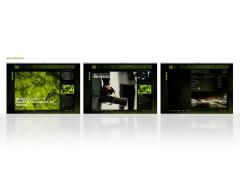 Diseño y programacion de web site para la empresa llumm