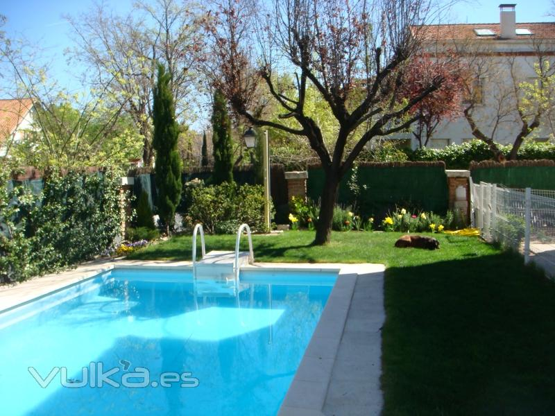 Foto jardin alrededor de piscina for Paisajismo jardines con piscina