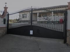 Puertas de forja con panel de pajaros y vid.dise�o y fabricaci�n propia.
