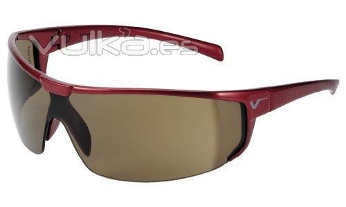 Gafas de protecci�n ocular BLS