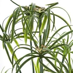 Planta artificial cyperus verde 1 en la llimona home