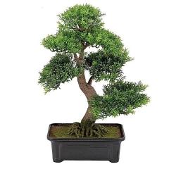 Bonsai artificial cedro verde en la llimona home
