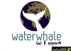 WaterWhale - Imagen corporativa