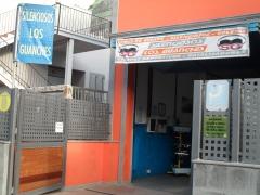 SILENCIOSOS LOS GUANHES      679743456