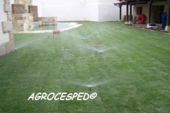 Riegos jardin cesped natural agrocesped