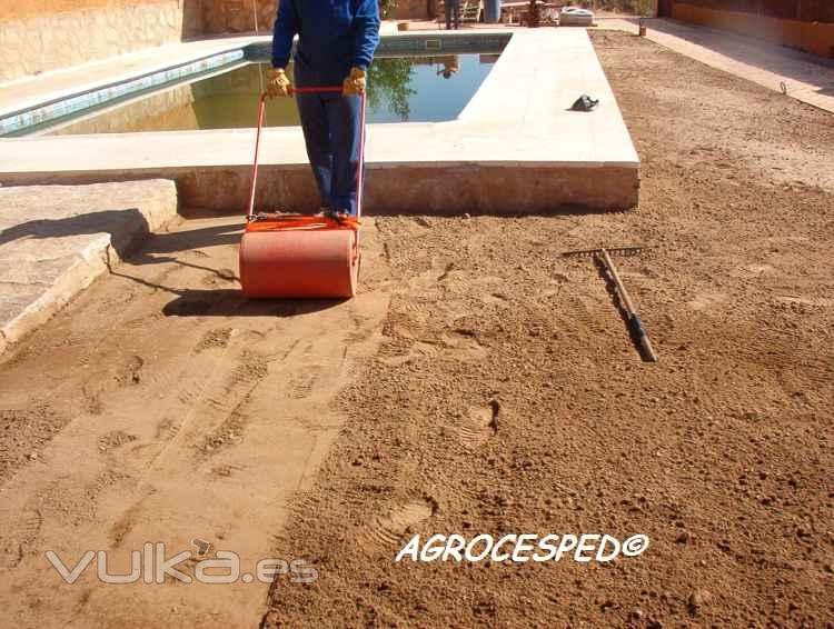 Agrocesped cesped natural en rollos o tepes c ceres - Plantar cesped natural ...