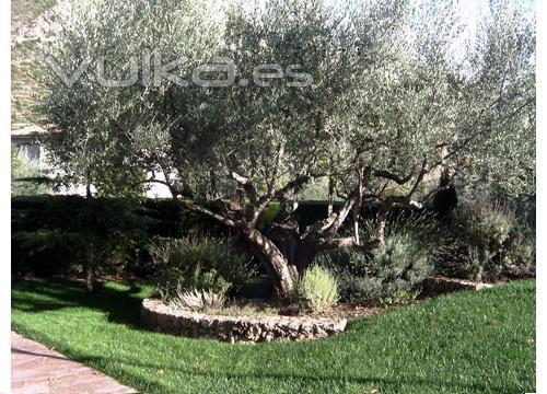 Foto mantenimiento de jardines particulares y empresas for Jardines particulares