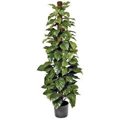 Planta artificial pothos en lallimona.com