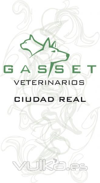 cl nica veterinaria gasset gasset veterinarios ciudad real