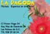 floristeria La Pagoda