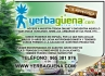 Yerbag�ena Grow Shop