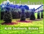 ALOE-jardineria, Bizkaia