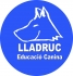 Lladruc