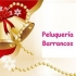 BARRANCOS PELUQUERIA
