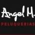 ANGEL MOLINA
